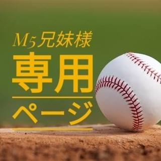 M5兄妹様専用ページ(応援グッズ)
