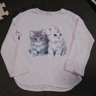 エイチアンドエム(H&M)のH&M 猫 ねこ セーター  (ニット)
