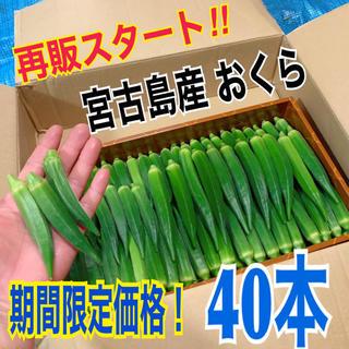 3 【40本】宮古島産 おくら オクラ(野菜)