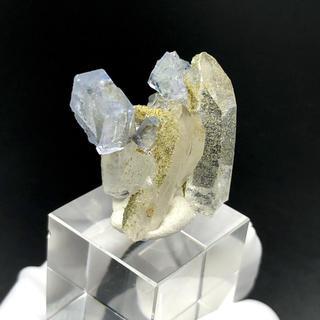 蛍石 水晶 中国ヤオガンシャン産 フローライト 鉱物 標本 [OH7-226]