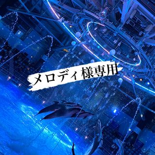 エグザイル トライブ(EXILE TRIBE)のメロディ様専用(日本映画)