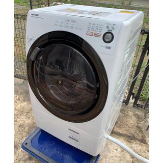 SHARP - SHARP プラズマクラスター搭載 コンパクトドラム式洗濯か