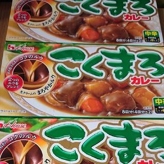 こくまろカレー3箱 熟カレー1箱おまけ(レトルト食品)