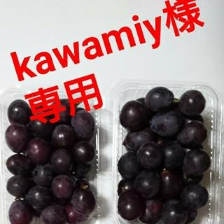 kawamiy様専用  ブドウ 朝取り紫玉 2k(フルーツ)