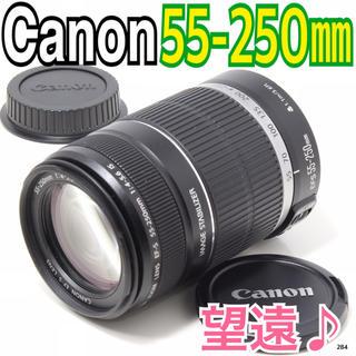 キヤノン(Canon)の✨迫力の望遠レンズ✨キヤノン Canon EF-S 55-250mm(レンズ(ズーム))