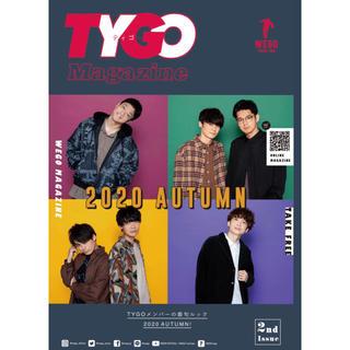 WEGO TYGO ティゴー 限定magazine 2冊セット