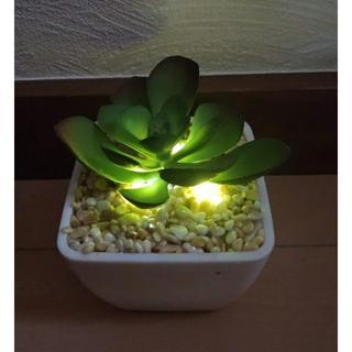 ライトアップ機能付き 光る人工観葉植物(その他)