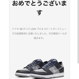 ナイキ(NIKE)のNIKE DUNK SB ダンク LOW プロ Dark Grey 25cm(スニーカー)
