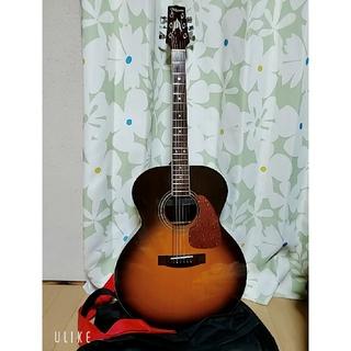 ギター タカミネ T-J1