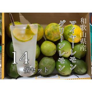 和歌山県産 マイヤーレモン 4個 グリーンレモン 10個 低農薬(フルーツ)