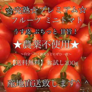 徳島県産 農薬不使用 プレミアム【ままトマト】薄皮 フルーツ ミニトマト トマト