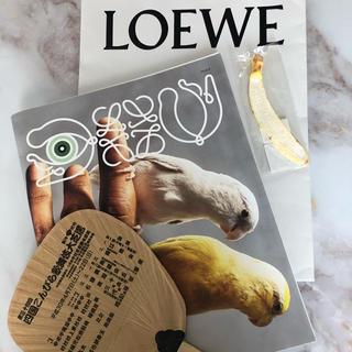 ロエベ(LOEWE)の非売品ロエベ 2019 クリスマスカタログおまけ付き(ファッション)