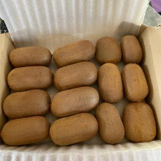 行列のできる美味しいキウイフルーツ14個(フルーツ)
