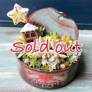 【最終価格】多肉植物*そのまま飾れる 寄せ植え*vol.16(その他)