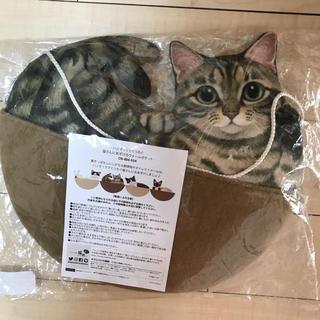 FELISSIMO - フェリシモ猫部 ハンモックでくつろぐ猫さんにあずけるウォールポケット
