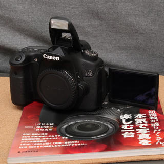 Canon - 実写確認済 Canon EOS 60D バッテリーなし