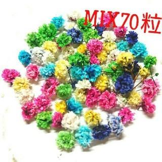 【無選別】かすみ草ドライフラワー70粒MIX(ドライフラワー)