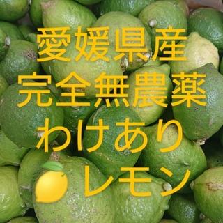 dajyana様専用❗❗無農薬レモン(わけあり3㎏)(フルーツ)