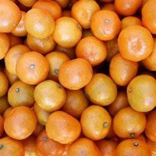 【農家直送】熊本みかん 肥のあけぼの 5kg 2S 小さいみかん 送料込(フルーツ)