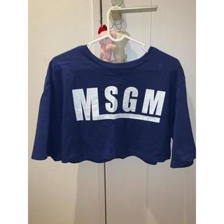 エムエスジイエム(MSGM)のMSGM ショート丈トップス(Tシャツ(半袖/袖なし))