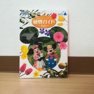 Disney - ディズニーリゾート 植物ガイド