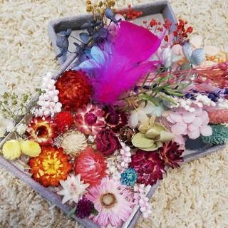 花材 ハーバリウム花材 プリザーブドフラワー ドライフラワー 在庫整理