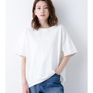 レプシィム(LEPSIM)の✾LEPSIM✾美品USAコットンSST M(Tシャツ/カットソー(半袖/袖なし))