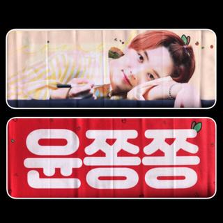 セブンティーン(SEVENTEEN)のジョンハン スローガン セット うちわ付き(K-POP/アジア)