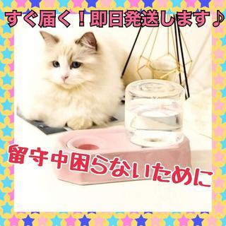 セラミックス 給水器 自動給水器 水飲み器 動物 水碗 水やり用品(猫)