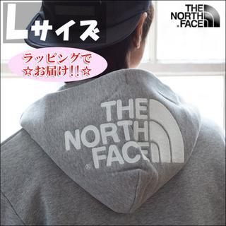 THE NORTH FACE - セール★Lサイズ★ノースフェイス リアビュー フルジップ パーカー グレー
