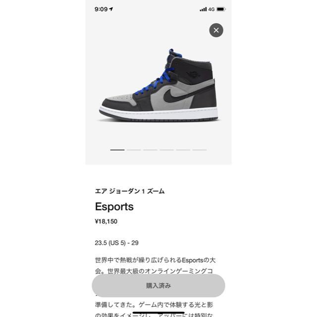 NIKE(ナイキ)のエア ジョーダン1 ズーム esports メンズの靴/シューズ(スニーカー)の商品写真