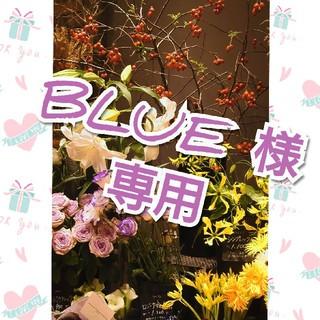 BLUE様専用ページ(茶)