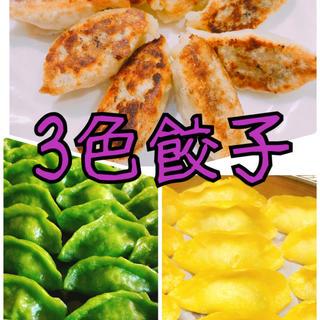 無添加 3色餃子 白・緑・黄色 野菜の色 無着色 皮もちもち 中ジューシー(野菜)