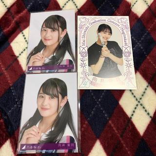乃木坂46 - 乃木坂46 向井葉月 白石麻衣卒業ライブ ポストカード