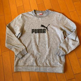 PUMA - PUMA プーマ  子ども160 トレーナー  スウェット裏毛 グレー