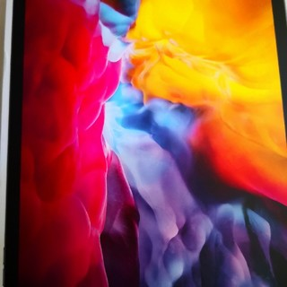 Apple - iPad Pro 11インチ 第2世代 WiFi 128GB 2020年春モデル