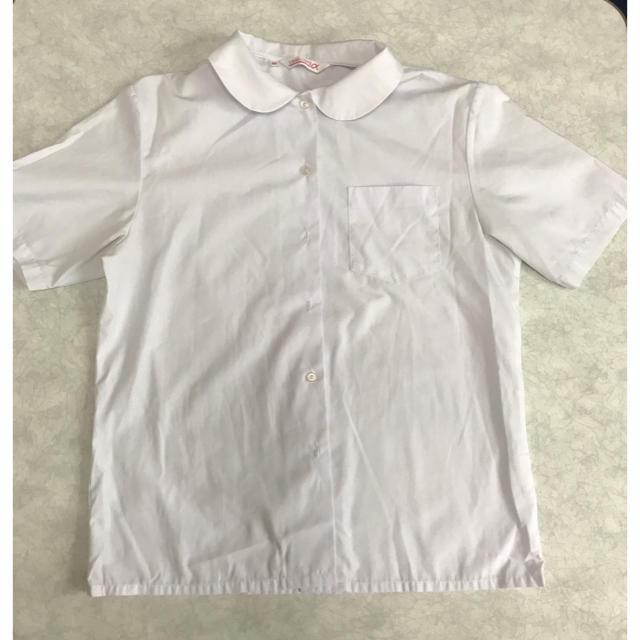 スクールシャツ 丸襟 半袖 未使用 レディースのトップス(シャツ/ブラウス(半袖/袖なし))の商品写真