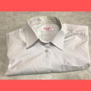 スクールシャツ 半袖 角襟(シャツ/ブラウス(半袖/袖なし))