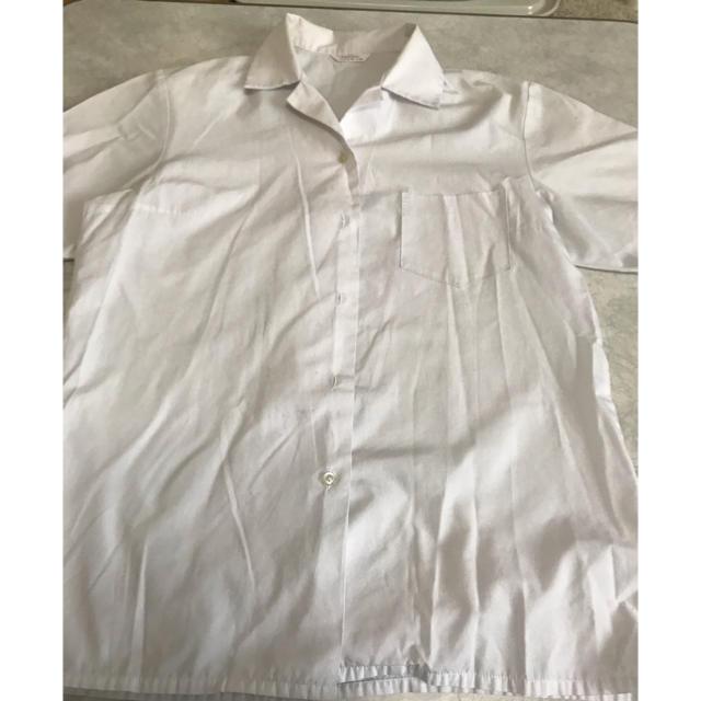 スクールシャツ 半袖 角襟 レディースのトップス(シャツ/ブラウス(半袖/袖なし))の商品写真