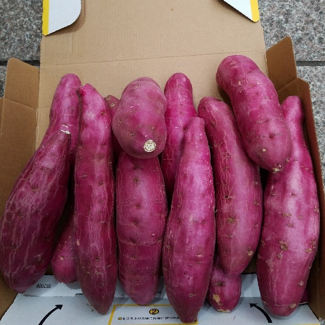 新物☆宮崎紅さつまいも約15個前後 箱コミ総量2kg 食品/飲料/酒の食品(野菜)の商品写真