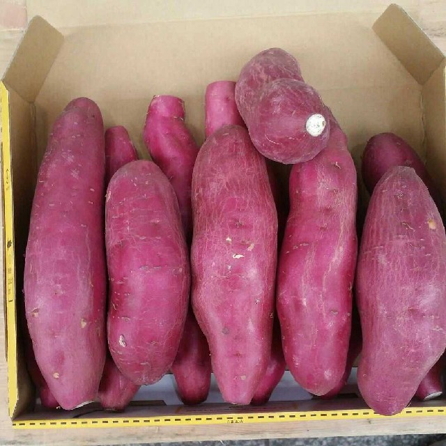 新物☆宮崎紅さつまいも約10~15個前後 箱コミ総量2kg 食品/飲料/酒の食品(野菜)の商品写真