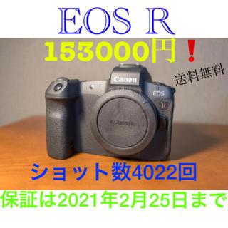 Canon - 送料無料 美品 Canon キヤノン EOS R