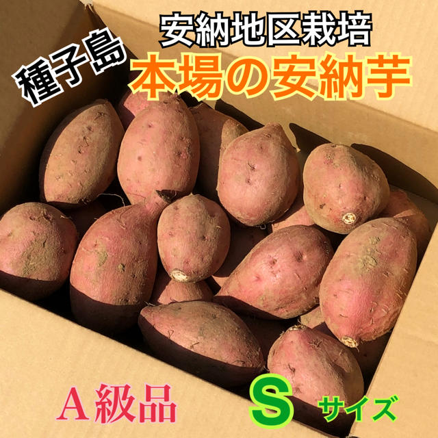 本場!安納産安納芋 S  2kg  A級品 食品/飲料/酒の食品(野菜)の商品写真