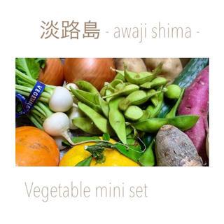 淡路島【 コンパクト 】10種 ミニ野菜set