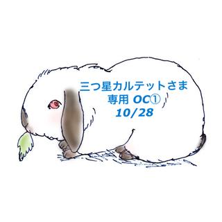 コフレドール(COFFRET D'OR)の★新品★コフレドールヌーディカバーロングキープパクトOC(ファンデーション)