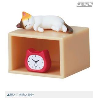 棚猫   棚と三毛猫と時計 (新品未開封)