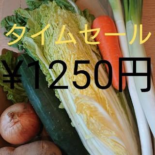 タイムセール★野菜詰め合わせセット★(野菜)
