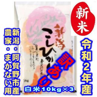 新米・令和2年産新潟コシヒカリ★色彩選別済白米10㌔×3袋★農家まかない用27(米/穀物)
