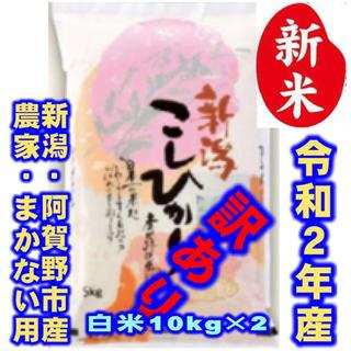 新米・令和2年産新潟コシヒカリ★色彩選別済白米10㌔×2袋★農家まかない用27(米/穀物)