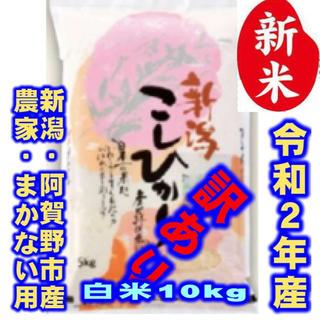 新米・令和2年産新潟コシヒカリ★色彩選別済白米10㌔×1袋★農家まかない用27(米/穀物)